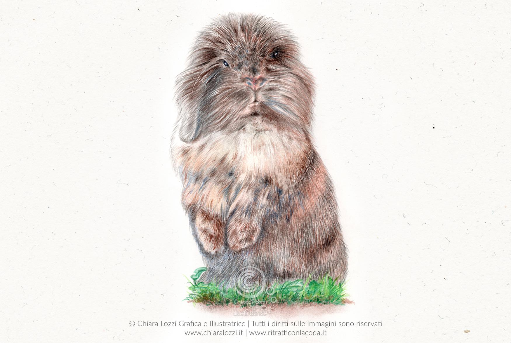 Ritratti Di Animali Domestici E Selvatici Realizzati Con